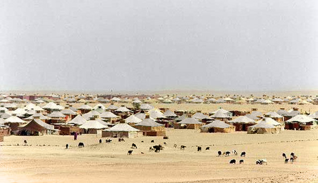 Sahrawi: Campo profughi a Tindouf, a sud ovest dell'Algeria