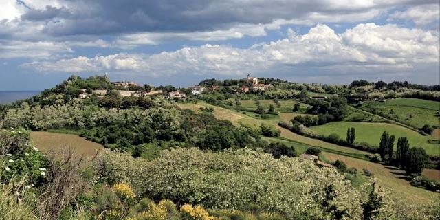 Il Boncio di Chiara, colline di Pesaro
